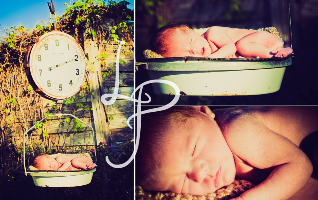 Sneak Peek {Kingston}