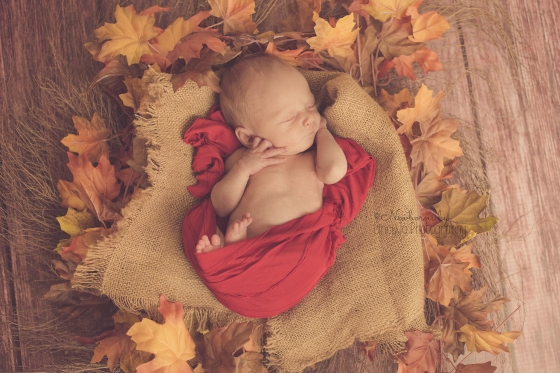 Fall newborn photo with red wrap and leaves